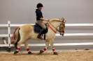 2015 Int Horse Show Sweden_1