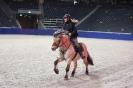 2015 Int Horse Show Sweden_3