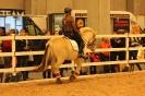 2015 Int Horse Show Sweden_8