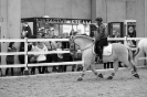 2015 Int Horse Show Sweden_10