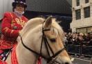 New Year's Parade London_4